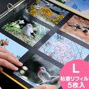 3240円以上ご注文で送料無料中 アルバム 粘着台紙 リフィル【粘着L】 PDフォトアルバム DEL