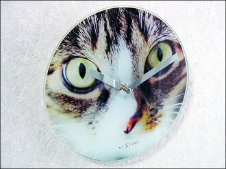 Clock | Wall hangings | Wall clock | Table clock | Fashion | Interior | Wall & stands clock CATS EYE