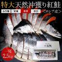 【特大】沖獲り紅鮭 一尾(約2.5kg)鮭 サケ さけ サー...