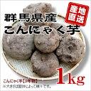 【群馬県産】★生芋こんにゃく手作り用こんにゃくいも★こんにゃく芋[1kg]