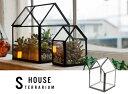 RoomClip商品情報 - 【 SMALL 】 House Terrarium / スモール ハウス テラリウム ショーケース ガラスケース プランター 植物 detail 【あす楽対応_東海】