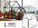 【 LARGE 】 House Terrarium / ラージ ハウス テラリウム ショーケース ガラスケース プランター 植物 detail 【あす楽対応_東海】の写真