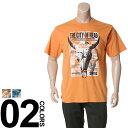 大きいサイズ メンズ B&T CLUB (ビーアンドティークラブ) 抗菌防臭 綿100% フォトプリント 半袖 Tシャツ BIG SIZE カジュアル トップス ティーシャツ イオンクラスター 静電防止