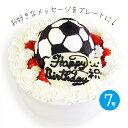 サッカーボールの立体 デコレーションケーキ 7号【プレート対応あり】誕生日ケーキ バースデーケーキ 記念日 優勝