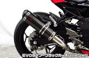Ninja250SL(ニンジャ250SL)JBK-BX250A TTRタイプスリップオンマフラー EVOタイプ ブラックカーボンバージョン ASAKURA(浅倉商事)