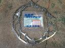 スノータイヤチェーン 2.50-17ノーマルタイヤ用 スプリングバンドSサイズ付 SHOYUSEISA(匠佑製鎖)