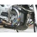 エンジンアンダーガード ドライカーボン ササキスポーツクラブ(SSC) BMW R1200ST
