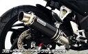 CB250F(14年〜) スリップオンマフラー スポーツタイプ ブラックカーボン仕様 ウイルズウィン(WirusWin)