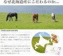【送料無料】 お得な6個セット 100%北海道産サラブレッドのみ使用 ダイアナプラセンタ 30粒 02P28Sep16