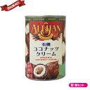 ショッピングカレー ココナッツクリーム ココナッツミルク 乳製品 豆乳 アレルギー アリサン 有機ココナッツクリーム 400ml 12個セット