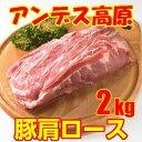 上質チリ産=【豚肩ロース】=業務用-旨味重視のとんかつに是非!2kg超ブロック2310円