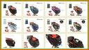【フロントシートカバー】OGK (オージーケー) RCH-003 (まえ幼児座席用ソフト風防レインカバー ハレーロ・ベビー) 自転車用カバー (RCH-003)