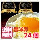 【豊洋卵】【割れ防止紙パックケース】安心・安全にこだわった【玉子】6個入り×4パック 送料無料 薬不使用 卵 楽天 お買い物マラソン