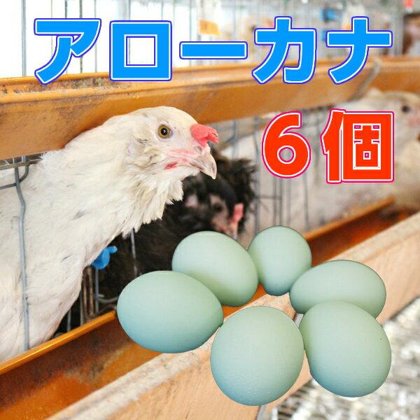 【アローカナ】青いたまご 幸せを呼ぶ【玉子】6個入り 幸せを呼ぶ 青い玉子 卵 ビタミン 楽天 お買い物マラソン 楽天最安値