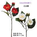 【お正月用 花材 椿】 全長約32cm 乙女椿(つぼみ付)1...