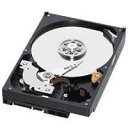 Western Digital 3.5インチ内蔵HDD 1TB SATA6.0Gb/s 7200rpm 64MB WD10EZEX-R