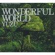 WONDERFUL WORLD/CD/SNCC-86917