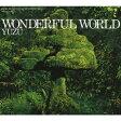 WONDERFUL WORLD/CD/SNCC-86918