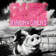 CHUBBY GROOVE(初回限定盤)/CD/BMCV-8050