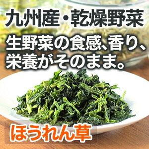国産野菜 九州産 ほうれん草 18g(200g相当)