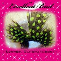 クリアストーン Excellent Bird 羽まつげ No.3