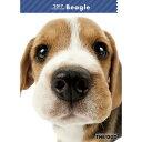 2017年度版 THE DOG スケジュールブック ビーグル