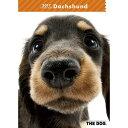 2017年度版 THE DOG スケジュールブック ダックスフンド