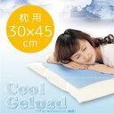 クールジェルパッド(枕用)30x45cm(CGP-P02)【0408MB_P3_eco03】【冷却マット】