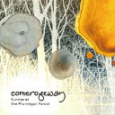 Sunrise at the Ptarmigan Forest/CD/ ワイキキレコード WAKRD-071