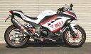 Ninja250 ニンジャ N-R Evolution Type2 ST250F用 ステンレスレーシングマフラー ブルーチタン BEET ビート