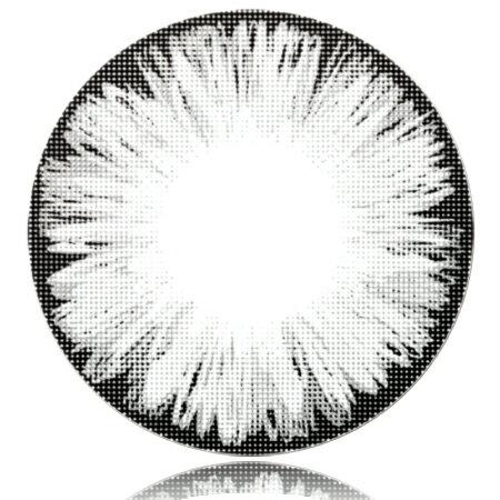 (Fresco(フレスコ)アイスグレイ Gray Lens Ice 度あり 14.5mm 1枚)