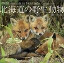 2016年カレンダー / 北海道の野生動物 2016年カレンダー