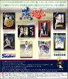 2016東京ヤクルトスワローズ オフィシャル・トレーディングカード シャドーボックスエディション エポック