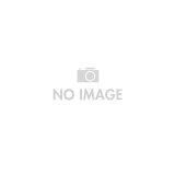 SONY SRS-X1(V)