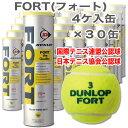 ダンロッププレッシャーライズド テニスボール FORT(4個入り)DFCPDYL4TIN (DFCPDYL4TIN)