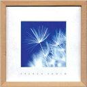 フォトグラフィアート/フレンチフォト Dandelion(インテリアアート/アートポスター/インテリアポスター)