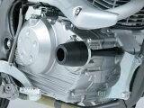 デイトナ エンジンプロテクター KLX125 79964