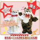 歌に合わせてオシャレにダンシング♪くるくる華麗に踊ります! まわるにゃん子姫の画像