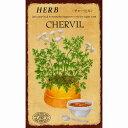 ハーブ HERB (チャービル) 品番:814の画像
