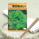 野菜の種 青ちりめんちしゃ 品番:2115の画像