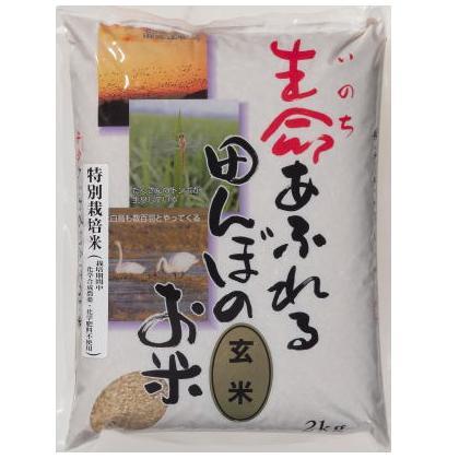 生命あふれる田んぼのお米 小野寺 特別栽培 生命あふれる田んぼのお米(ひとめぼれ 玄米) 4k