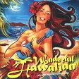ワンダフル・ハワイアン~リラックス・ウィズ・ハワイアン・スタンダード・ソングス/CD/KICP-1658