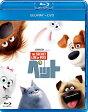 ペット ブルーレイ+DVDセット/Blu-ray Disc/GNXF-2188
