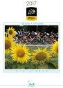 ツール・ド・フランス2017 スペシャルBOX(Blu-ray)/Blu-ray Disc/ 東宝 TBR-27383D