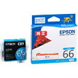 EPSON ICC66