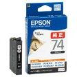 EPSON ICBK74