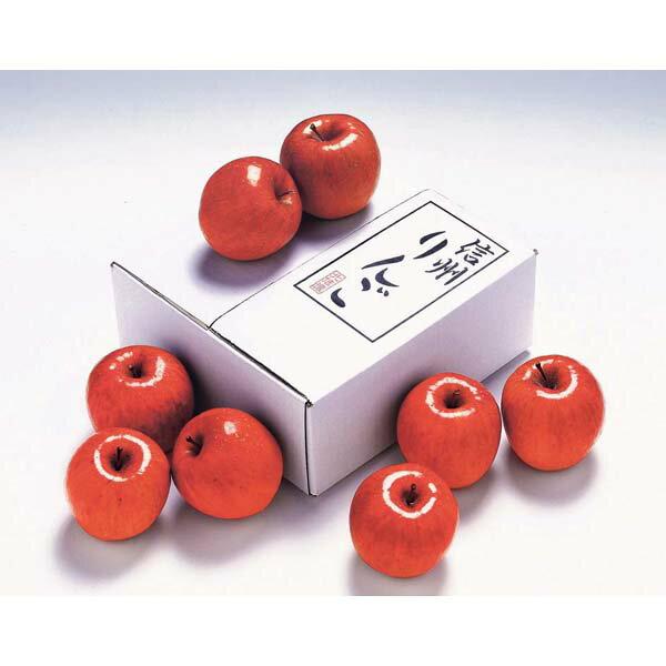 高見澤 長野県産 サンふじりんご サンふじりんご 8玉 約2kg