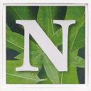 アルファベット アートフレーム グリーン N