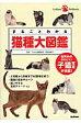 まるごとわかる猫種大図鑑 世界中のかわいい子猫写真が満載!  /学研パブリッシング/早田由貴子