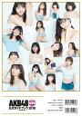 AKB48総選挙公式ガイドブック2018 講談社 9784065119587